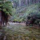 Mountain River by Jane Keats
