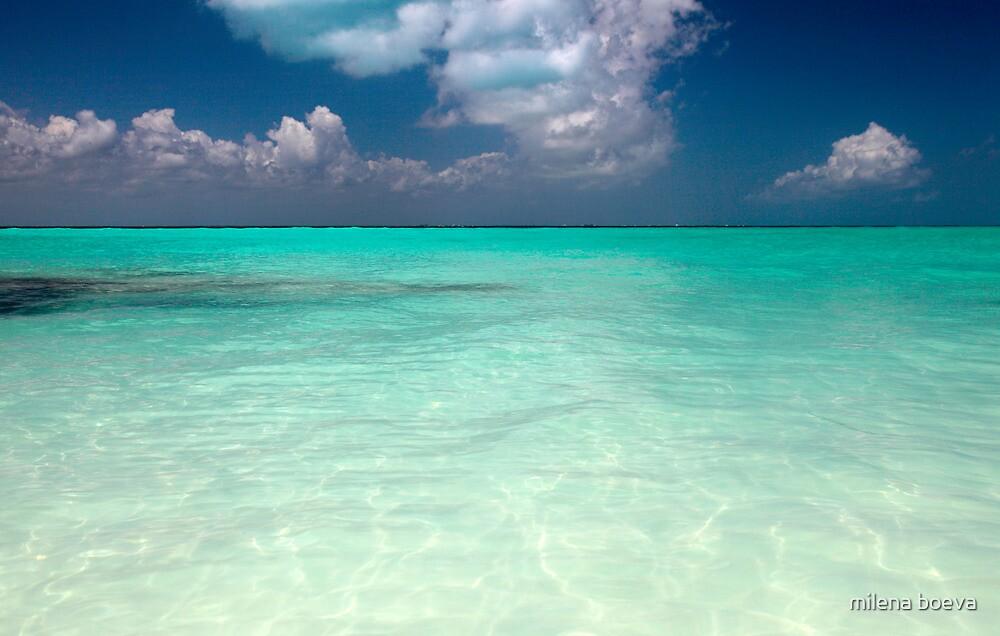 mexican beach by milena boeva