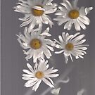 Denim and Daisies Five by linmarie