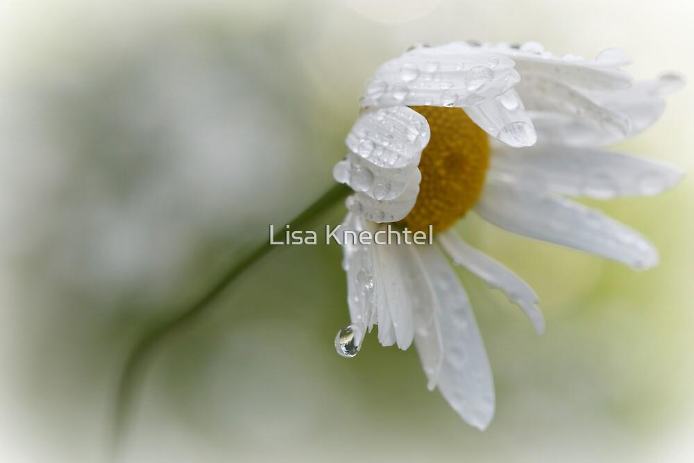 Shedding a Tear by Lisa Knechtel