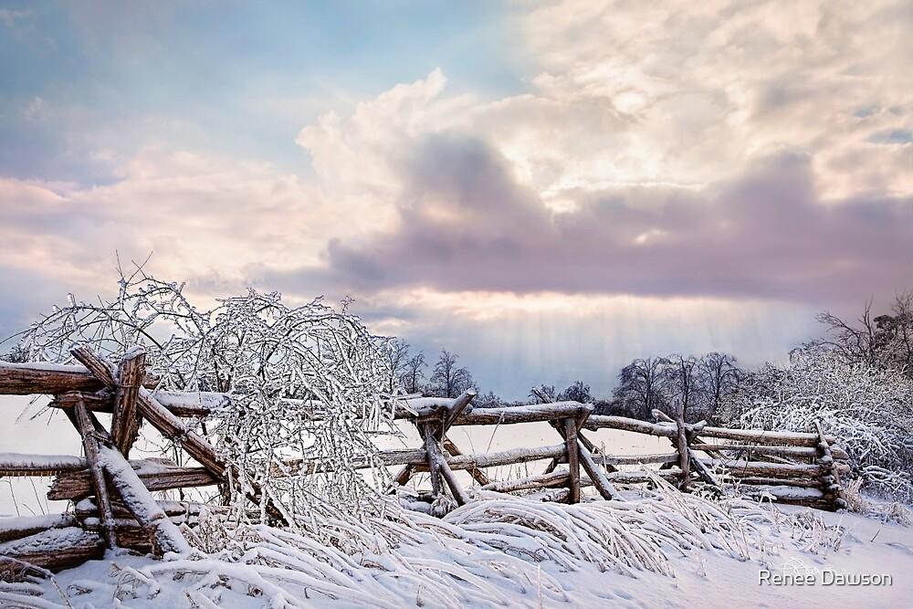 Road to Salem - Winter Landscape by Renee Dawson
