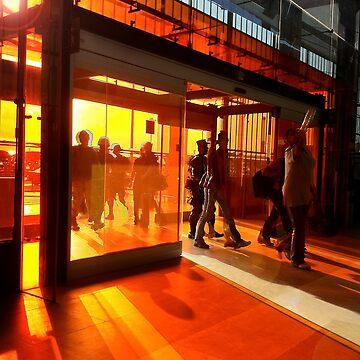 In the orange by davfoto