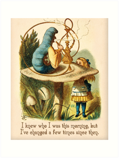 Quot Alice In Wonderland Quote I Knew Who I Was