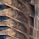Symmetry by Marguerite Foxon
