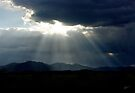 Before the Storm ~ Sierra Co, New Mexico by Vicki Pelham
