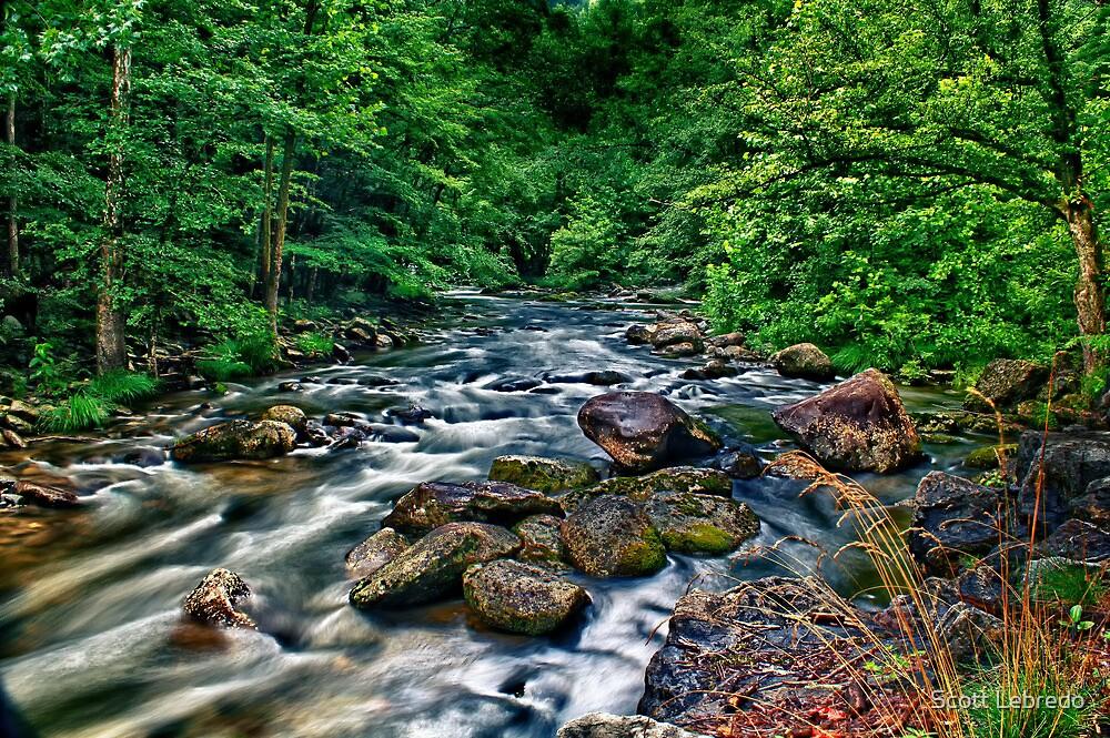 Down to the River to Pray by Scott Lebredo