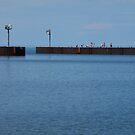Saxon Harbor by AuntieJ