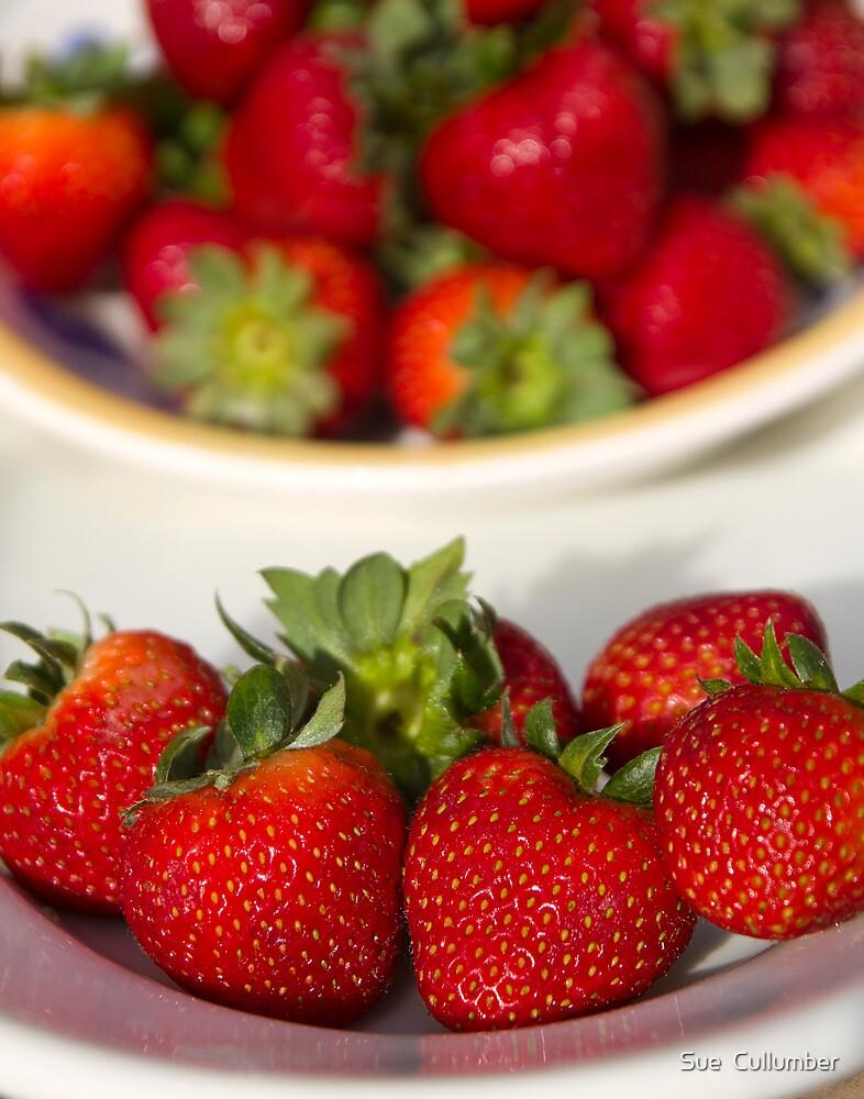 Summer Berries by Sue  Cullumber