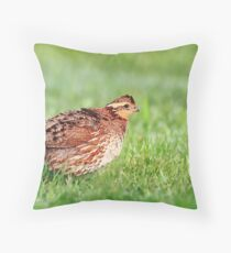 Northern Bobwhite - Female Throw Pillow