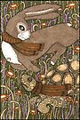 The Tortoise and the Hare (Colour) by Anita Inverarity
