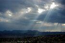 Before the Storm II ~ Sierra Co, New Mexico by Vicki Pelham