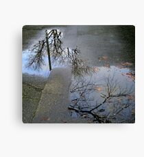 fractured reality Canvas Print