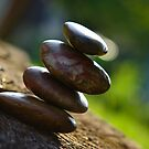 Balanced Rocks by Christopher Gaines