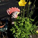Guardian of the Welsh poppies by sarnia2