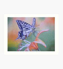 Nectar Of Flight Art Print