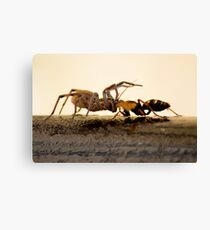 Pull of nature Canvas Print