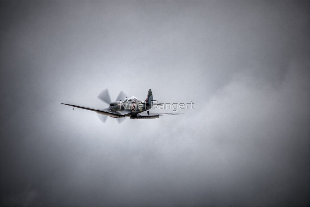 Supermarine Spitfire Mk IXT SM520 by Nigel Bangert
