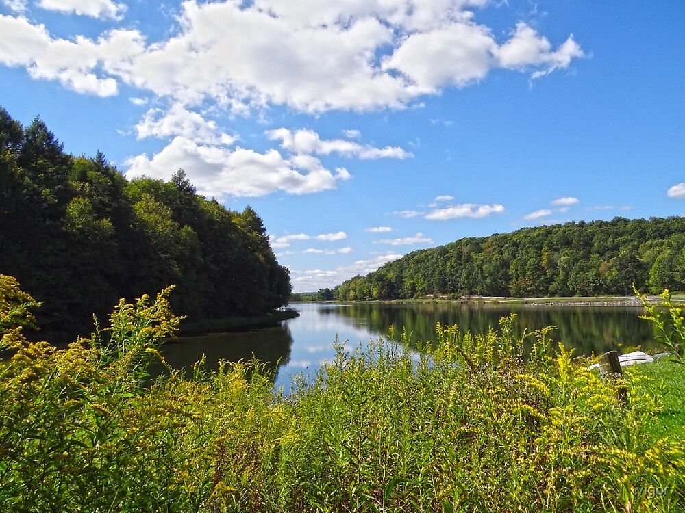 Lakeside scenery by vigor