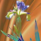 Iris Spuria by Dale Lockridge