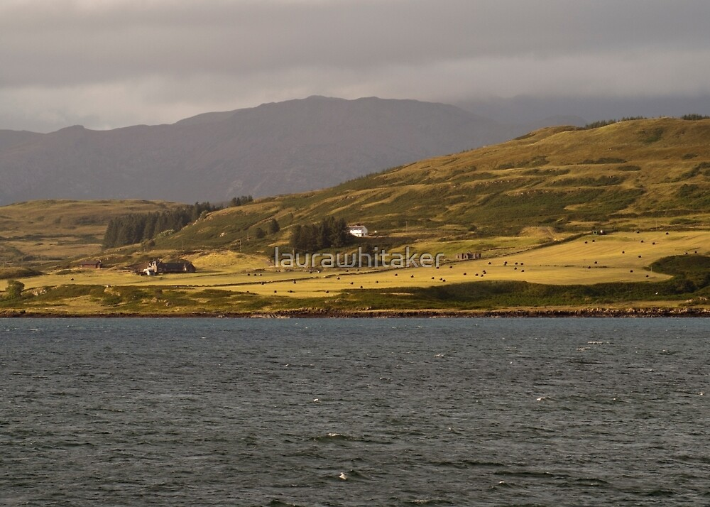 Isle of Mull, Scotland by laurawhitaker