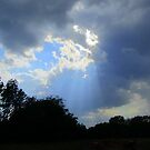 God's Rays on Haying Day by Debbie Robbins