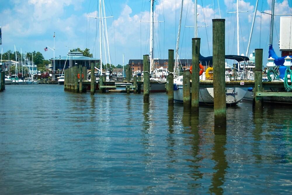 Annapolis Harbor by catgrump