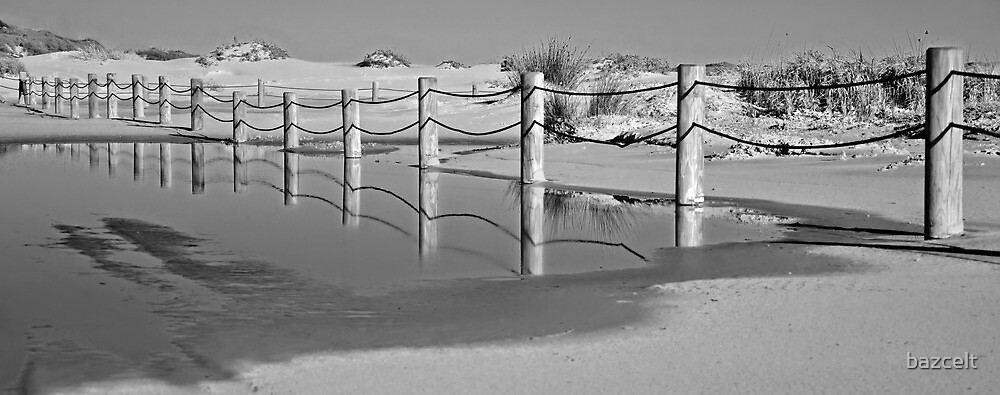 Fence Reflections by bazcelt