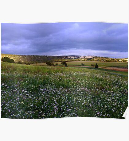 Views from Sandford House - Perth CBD - Western Australia Poster