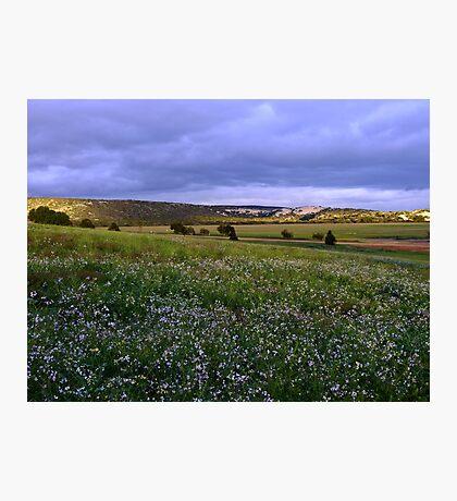 Views from Sandford House - Perth CBD - Western Australia Photographic Print