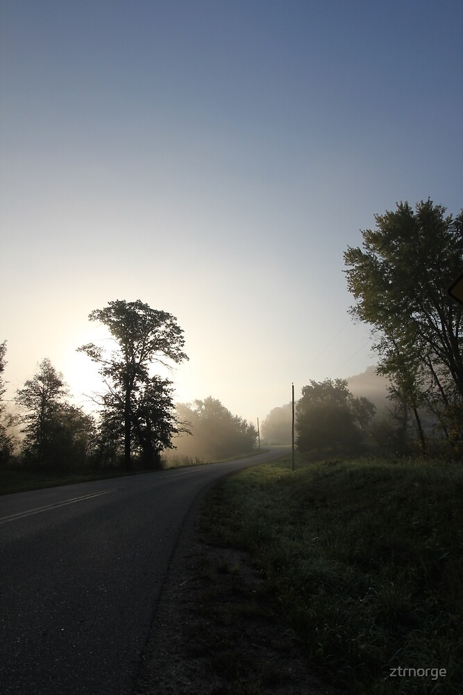 Misty Morning on a Minnesota Country Road by ztrnorge