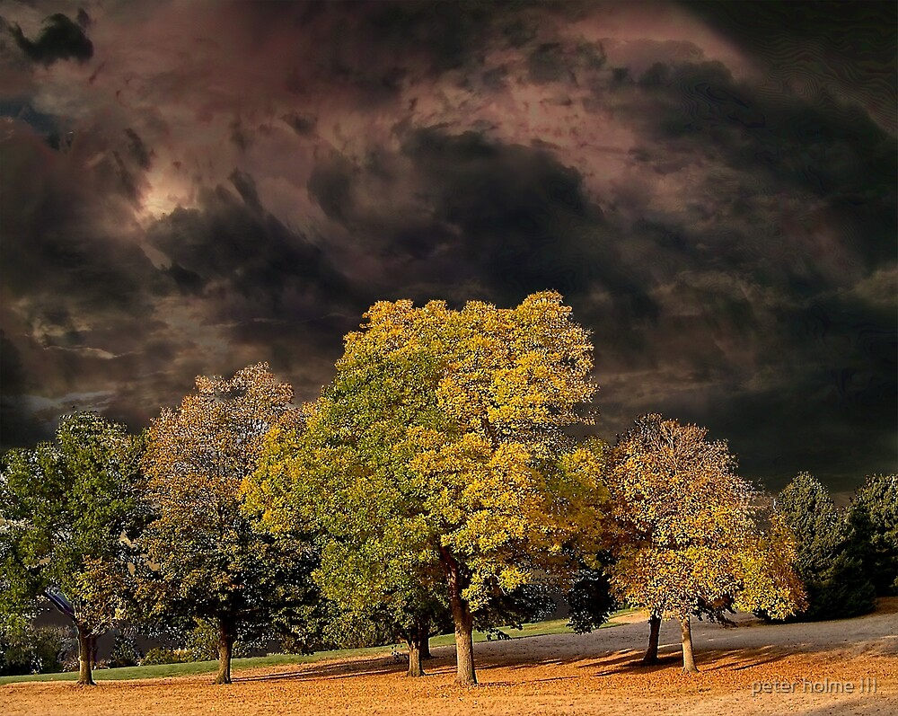4010 by peter holme III