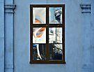 Window Art by Mojca Savicki