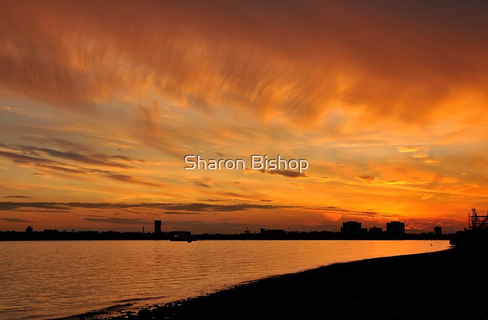Sunset over Portsmouth harbour, UK by Sharon Bishop