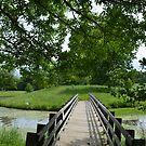 Little ole' bridge over the water by Paula Betz