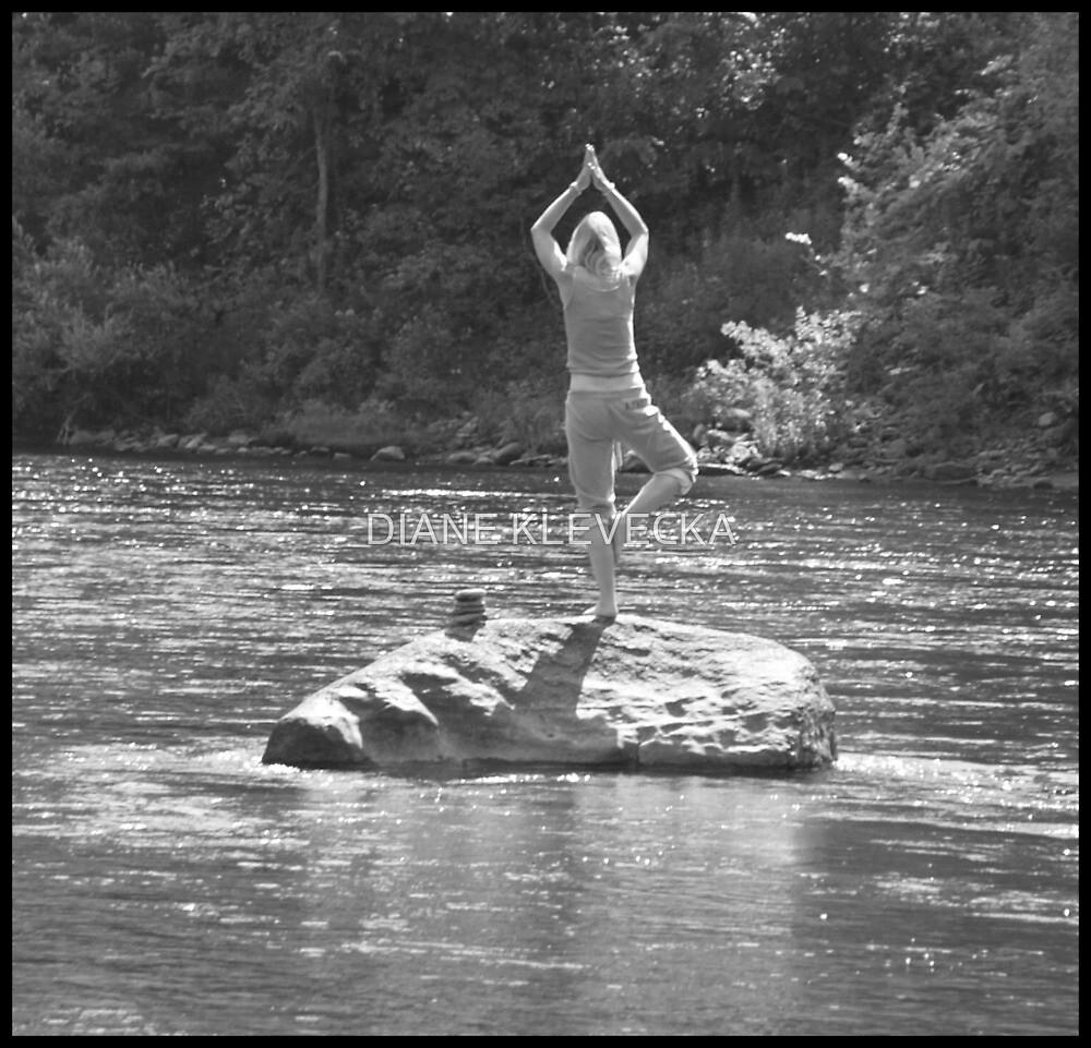 Balance by DIANE KLEVECKA
