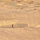 Lone Walker by Peter Hammer
