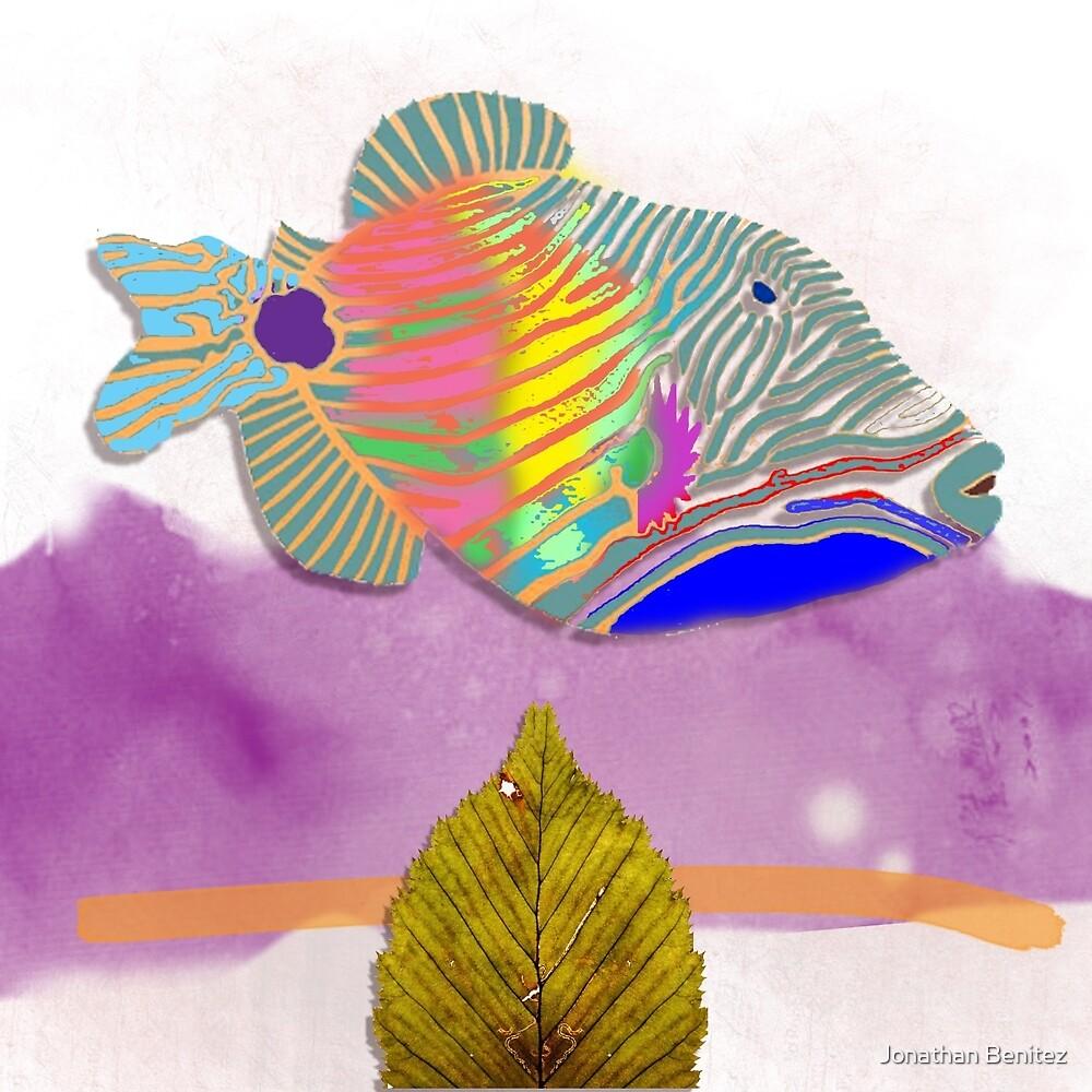 coral fish by Jonathan Benitez