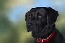 Black Lab - Dog Portrait by Renee Dawson