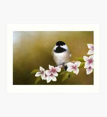 Apple Blossom Chickadee Art Print