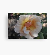Wet The Flowers Canvas Print