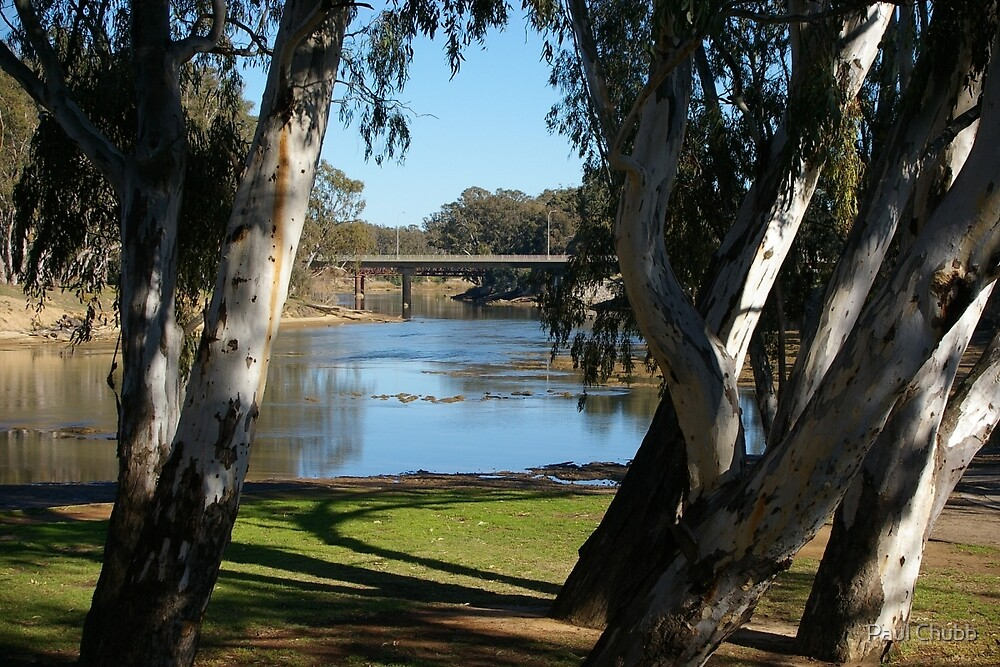 The Mighty Murray River by Paul Chubb