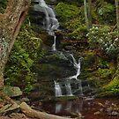 Buttermilk Falls - Tillmans Ravine by Stephen Vecchiotti