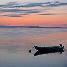 River Tay at Dawn by Panalot