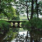 Bow Bridge by Paul Gibbons