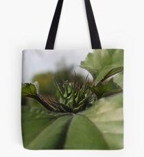 Guided in buy the huge leaf Tote Bag