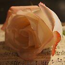 You Make My Heart Sing by Kathy Bucari