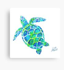 Sea Turtle no splots by Jan Marvin Canvas Print
