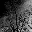 Come The Darkshine by Thomas Eggert