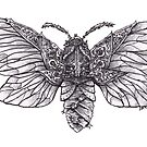 Steampunk Moth by Betsy Streeter