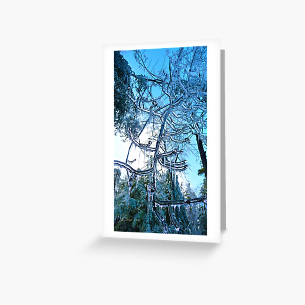 Ice Storm of 2008 Greeting Card
